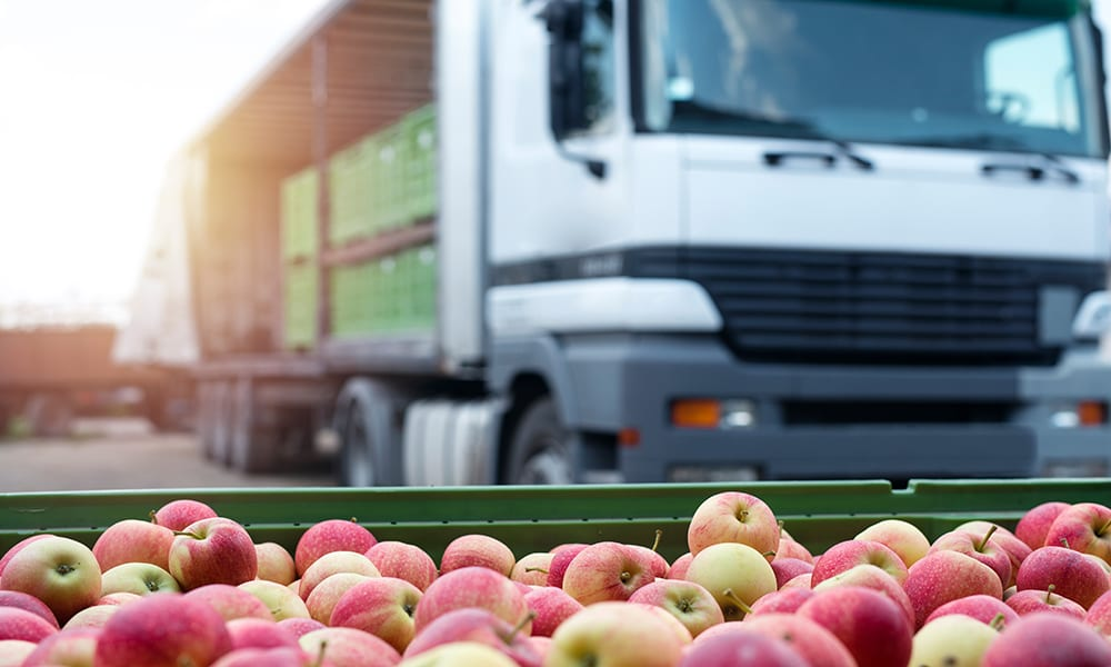 Image of apples being loaded onto a lorry
